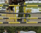 Top: Ainsley Vince of Milton, ON, wonthe $20,000 Aviva Elite/Peel Maryborough Caledon Cup Phase I at the Canadian Show Jumping Tournament in Palgrave, ON. Bottom:Jackie Tattersall of Caledon, ON, rode Sunday Punch to victory in the OHJA Ultimate Hunter Challenge at the Canadian Show Jumping Tournament. Photos by: www.ShootPhoto.ca