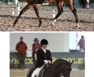 Above: Elstone and Why Not G scored 64.903% for eighth place in the Grade 4 Individual Championship test. Below: Madison Lawson made her debut at the World Championship level of competition with her horse McGuire. They earned a score of 61.419% for 15th place. Photos by: Robin Duncan Photography