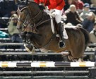 Olympic Champions Eric Lamaze of Schomberg, ON, and Hickstead led the Canadian Show Jumping Team to a fifth place finish at the 2010 FEI Alltech World Equestrian Games in Lexington, KY. They are currently ranked fourth individually