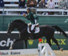 The Kingdom of Saudi Arabia's Khaled Al Eid jumped into the individual lead with Presley Boy today in the Jumping Championship at the Alltech FEI World Equestrian Games™. Photo by: FEI/Dirk Caremans