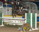 Nicole Walker won the 2010 Jump Canada Medal at the 2010 Royal Horse Show in Toronto, ON. Photo by Cealy Tetley