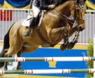 Margie Gayford of Sharon, ON, won the 2010 Jump Canada Talent Squad Final on Saturday, November 6, at Toronto's Royal Horse Show. Photo by Cealy Tetley