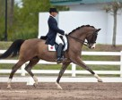 Tom Dvorak earned the top Canadian score at the CDI-W Wellington Classic Dressage Spring Challenge, held February 11-13, Plam Beach Country Jim Brandon Equestrian Center, in West Palm Beach, FL, USA. Photo by Sharon Packer