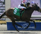 New Tomorrow, trained by Wesley Ward, won the curtain-raiser on Opening Day at Woodbine.