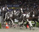 Dutch driver Koos de Ronde has won the second leg of the FEI World Cup™ Driving in Stuttgart.