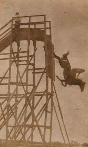 Carver's Diving Horse