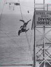 Horse diving at the Steel Pier, New Jersey.