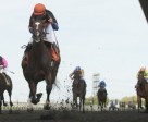 Todd Kabel guides Strut the Course