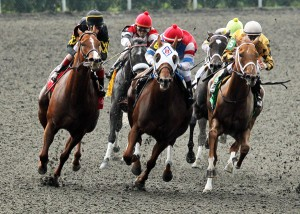 WEB-JUDY-THE-BEAUTY---The-Thoroughbred-Club-of-America-Gr-II---10-05-13---R06---Turn