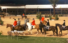 Fox hunting exhibition before the Palm Beach Hunter Spectacular.