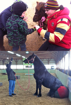 Sarah McNeil and her family brought Sarah's 11-month-old miniature horse, Promise. Here she is with some adoring fans. Below is Pax, who is proving that he can do two things at once.
