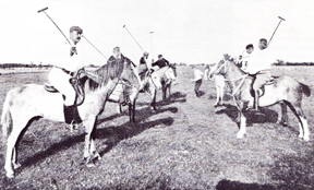 The Green Sixteen: This was the first game and the first team for the Montreal Polo Club.