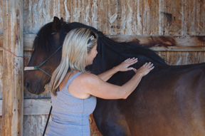 Equine physiotherapist Sundai Oulton here with a combo of 'hot hands,' careful massage - and hard-headed skeletal and muscle knowledge -  loosening up wire-tight knots along the shoulder line.""