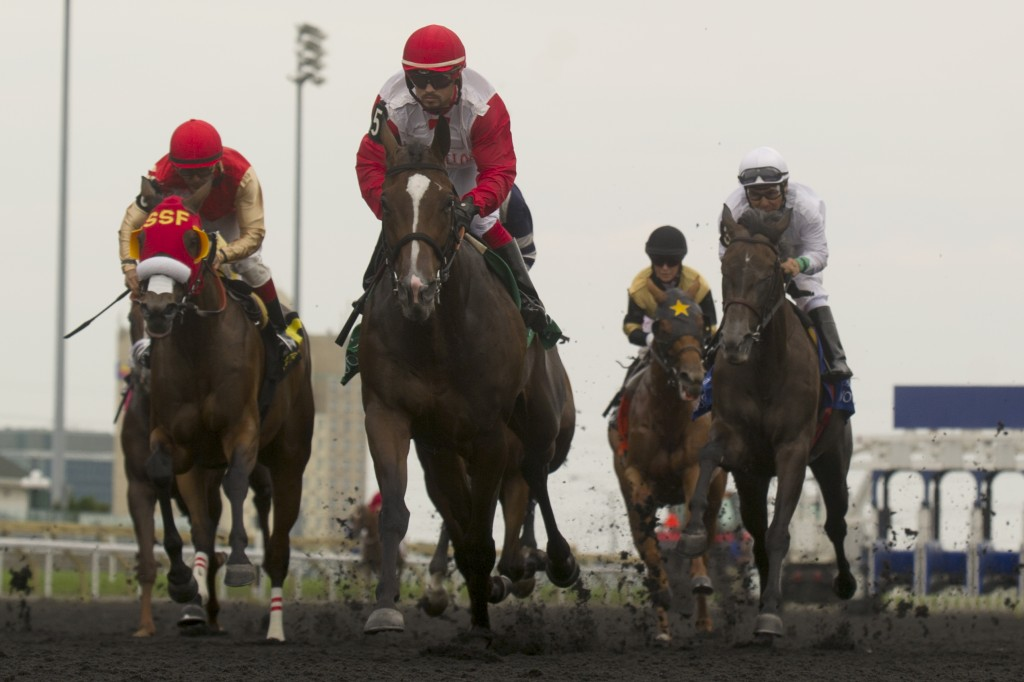 Toronto Ont.July 26, 2014.Woodbine Racetrack.Ontario Matron Stakes La Tia Jockey Justin Stein.WEG/michael burns photo
