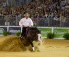 Shawn Flarida steered Spooks Gotta Whiz to win individual Reining gold at the Alltech FEI World Equestrian Games™ in Parc des Expositions at Caen, Normandy. Photo by Dirk Caremans/FEI