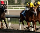 Eurico Da Silva (black and yellow silks outside #3) guides Paso Doble to victory in the Overskate Stakes at Woodbine Racetrack. Photo by Michael Burns Photography