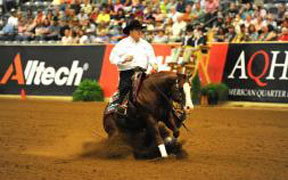 Reining: a very popular discipline added in 2002.