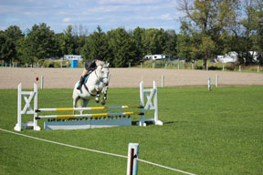 It may not have been pretty, but Jen and Luc pull out a clean round in stadium jumping.