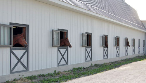Outdoor Air For Indoor Care Horse Canada