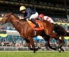 Hillstar, ridden by Jockey Ryan Moore capture the $1,000,000 Pattison Canadian International Stakes at Woodbine. Photo by Michael Burns Photography