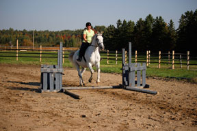 Four strides in the five stride line? No problem, we nailed it!