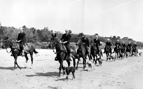 This photo shows the horses and patrolmen on the beach with the well trained dogs walking alongside.