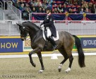 Karen Pavicic and Don Daiquiri win the Grand Prix test Grand Prix test at the Royal Invitational at the the Royal Horse Show. Photo by Cealy Tetley