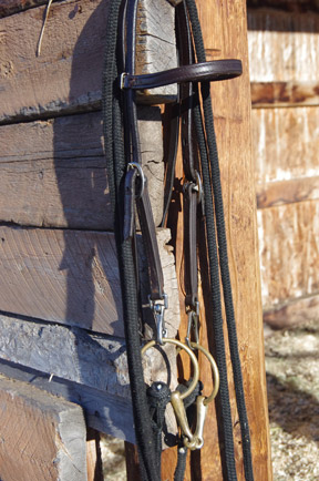 Here's an endurance style bridle that trotted my way somehow, which I use on youngsters when first bitting them. Unclip the bit, the headstall's a breeze to slide on, clip on the bit on the right-hand side, move over to the left, mouth open, and poof!, the bit's in place with no hemming and yawing. Touch wood, it's worked well so far.