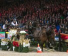 The Netherlands' Koos de Ronde and his four-in-hand on their way to victory in the last FEI World Cup™ Driving qualifier of the 2014/15 season. Photo by Karl Heinz Frieler/FEI
