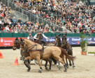 The Netherlands' Koos de Ronde and his four-in-hand on their way to victory in the last FEI World Cup™ Driving qualifier of the 2014/15 season. Photo Karl Heinz Frieler/FEI