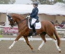 Roberta Sheffield and Double Agent will represent Canada at the Al Shaqab CPEDI3* Para-Dressage event from Mar. 5-7, 2015, being held in Education City, Doha, QAT. Photo by Graham Gannon