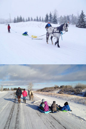 The top photo was taken two years ago on a very cold day. Matthew Legault is on skis and his brother Anthony is in the sled. A similar action shot (below) was taken on December 29, 2014 of their sister Ariane driving, mother Eva walking next to her to make sure all is good ;-)  Knight is pulling Matthew (royal blue jacket), Anthony (black and grey plaited pattern), and friends Kaya (pink) and Adlai (stripped blue and black jacket).  It was very cold; -23C. None of the children complained. They all had a super time, their mother Eva wrote me, thanks to Knight being on his best behaviour.