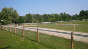 There are a multitude of options for combination fencing, Wire Mesh and a sight line of Flex Fencing are pictured here.