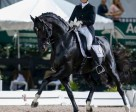Ashley Holzer and Dressed In Black took seventh place in the prestigious FEI Grand Prix Freestyle CDI-W with a score of 72.35% during week nine of the Adequan Global Dressage Festival in Wellington, Fla. Photo by Susan J. Stickle