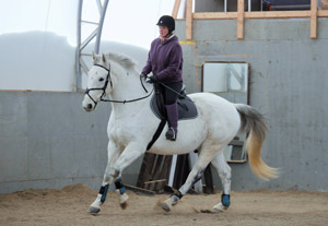 A nice, relaxed canter in the arena at last!