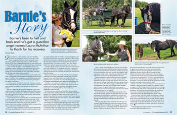 Winsong Farm's Spring Fundraiser will benefit Laura McArthur's Silver Willow Farm. One of the horses she rescued, Barnie, was featured in the November/December 2014 issue of Horse-Canada.