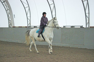 We work through our canter issues.