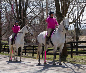 """Dominique Maida on Zeloso, Winnie on Zelador, waiting for the cue to start their garrocha pole routine to """"Girls Just Want to Have Fun""""."""
