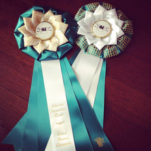 Edenview's ribbons for this season are a work of art!