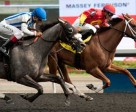 Alan Garcia guides Ol' Fashion Gal to victory in the $150,000 Selene Stakes at Woodbine Racetrack. Photo by Michael Burns Photography