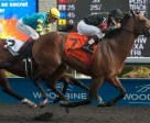 Rafael Hernandez guided Shaman Ghost to victory in the $154,600 Grade 3 Marine Stakes, at Woodbine. Photo by Michael Burns Photography