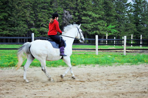 I take away my own stirrups for the ride.