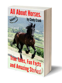 all-about-horses-3D-Book-Template-(1)