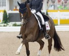 Brittany Fraser of New Glasgow, NS, is currently ranked second individually with All In in dressage competition at the 2015 Pan American Games.                                                                Photo © Cealy Tetley - www.tetleyphoto.com