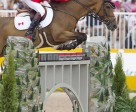 Ian Millar of Perth, ON, won a team gold medal and tied for 16th individually in his record tenth Pan American Games appearance riding Dixson, owned by Susan and Ariel Grange.