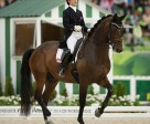 Belinda Trussell and Anton are one of the six horse-and-rider combinations chosen to receive funding from the Canadian Dressage Athlete Assistance Program (C-DAAP) to train for and compete in the 2016 Olympics (Photo courtesy of CLiXPhoto.com)