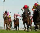 Luis Contreras (yellow silks red cap #6 inside rail) out duels Tower of Texas (L) to capture the $200,000 Play the King Stakes at Woodbine. Photo by Michael Burns Photography