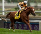 John Velazquez guides Wise Dan to victory in the $1,000,000 Ricoh Woodbine Mile. Photo by Michael Burns Photography
