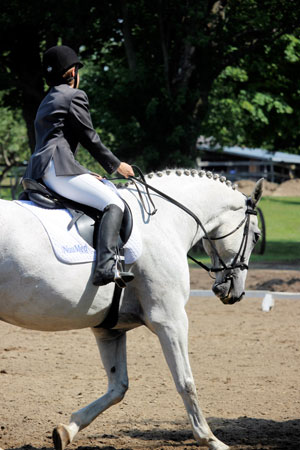 Jen and Luc shine in dressage.