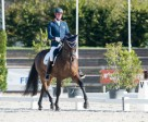 The Netherlands' Frank Hosmar continued his excellent weekend by taking his first major championship freestyle gold in the Grade IV competition with Alphaville N.O.P. to help the Dutch to the top of the medal table. (Jon Stroud/FEI)